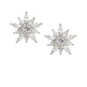 Banana Republic Snowflake Earrings